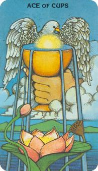 Morgan Greer Tarot:  Ace of Cups