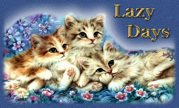 Lazy Days Title Page, 3 kittens on a pillow