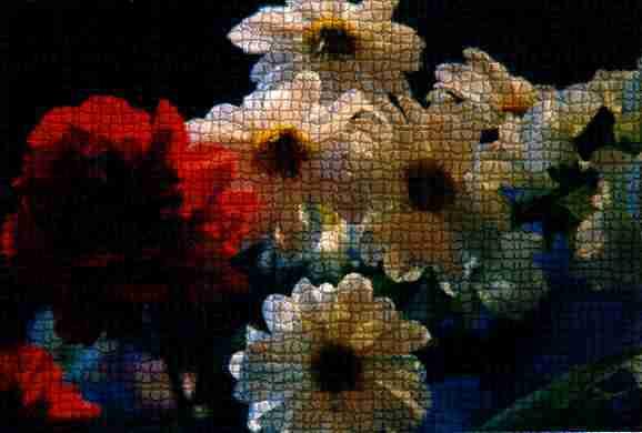 Carnation & Daisies by Cheryl Lynne Bradley